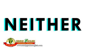 Meaning of Either