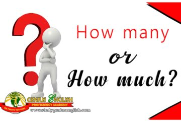 what is the difference between how many and how much questions?