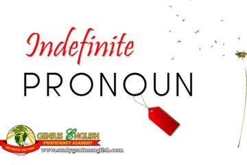 indefinite pronoun meaning and examples
